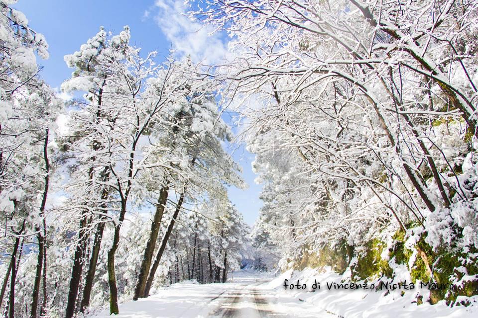 Dopo la neve peloritana, clima volubile e tipicamente invernale.
