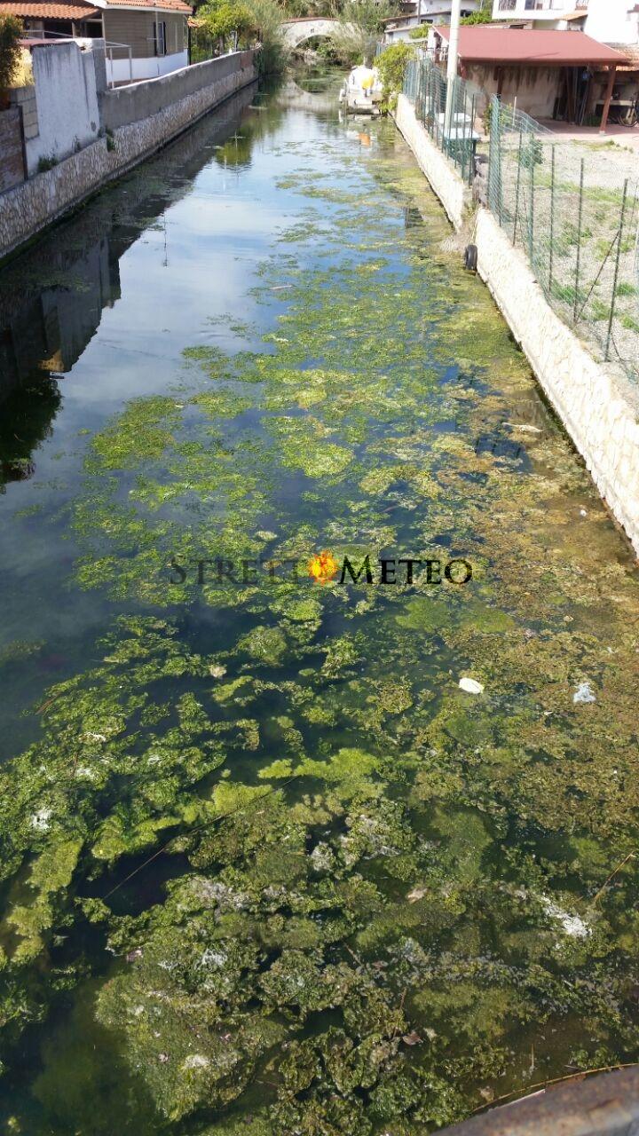 I laghi di Ganzirri e Faro. Tra riserva naturale e pietosa realtà.