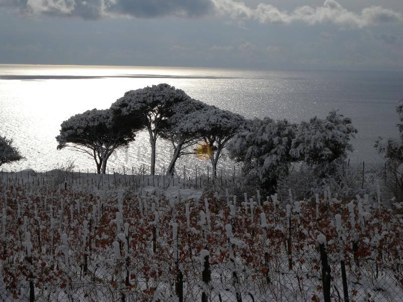 La Sicilia lambita dal freddo siberiano. Neve probabile su Nebrodi e Peloritani.