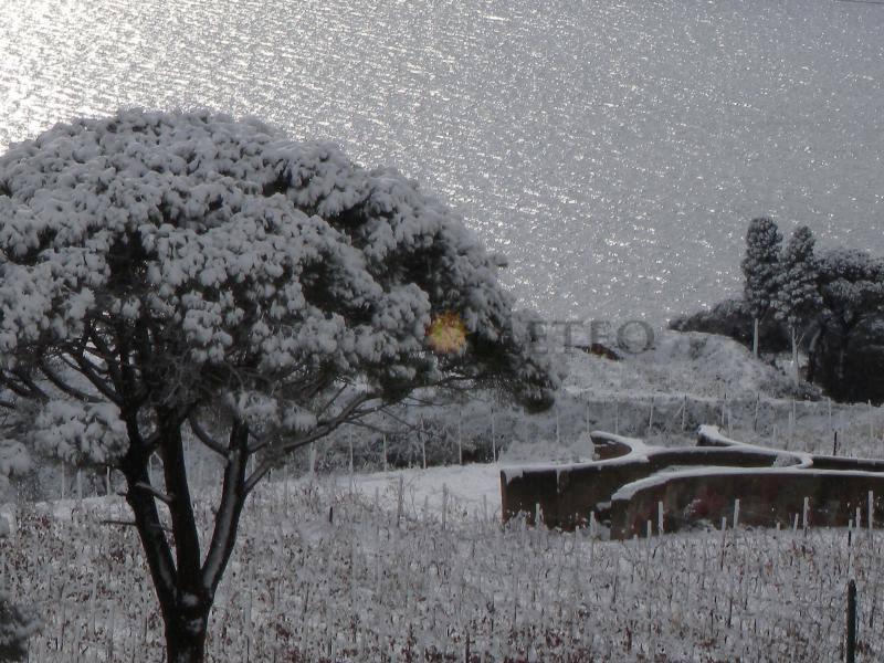Il 2018 ci saluta con tramontana intensa e clima rigido. Scenari gelidi per inizio anno!