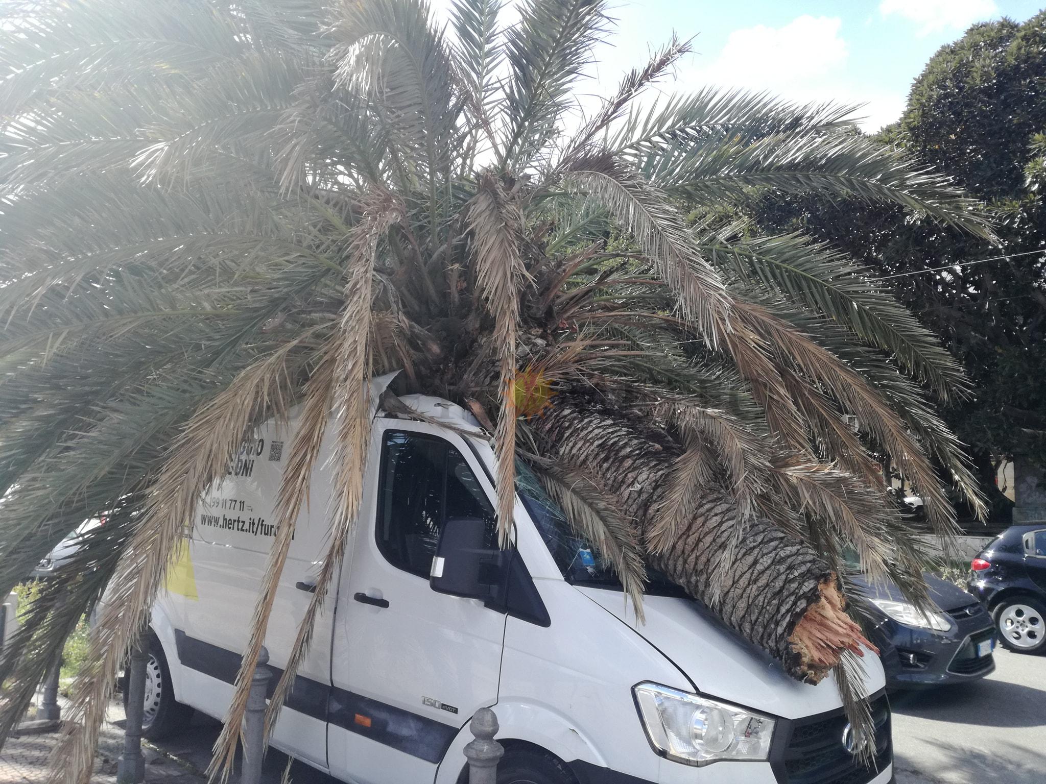 Venti da uragano di 1° categoria devastano il territorio provinciale! Danni ingenti in città!
